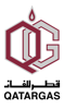 Competency Based Development Spectrain at QatarGas