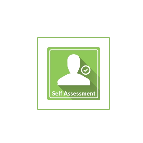 Self Assessment | Responsible Gaming | Mr Green